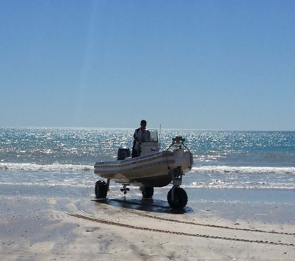 broome whale watching using sea legs to get customers on and off their boat